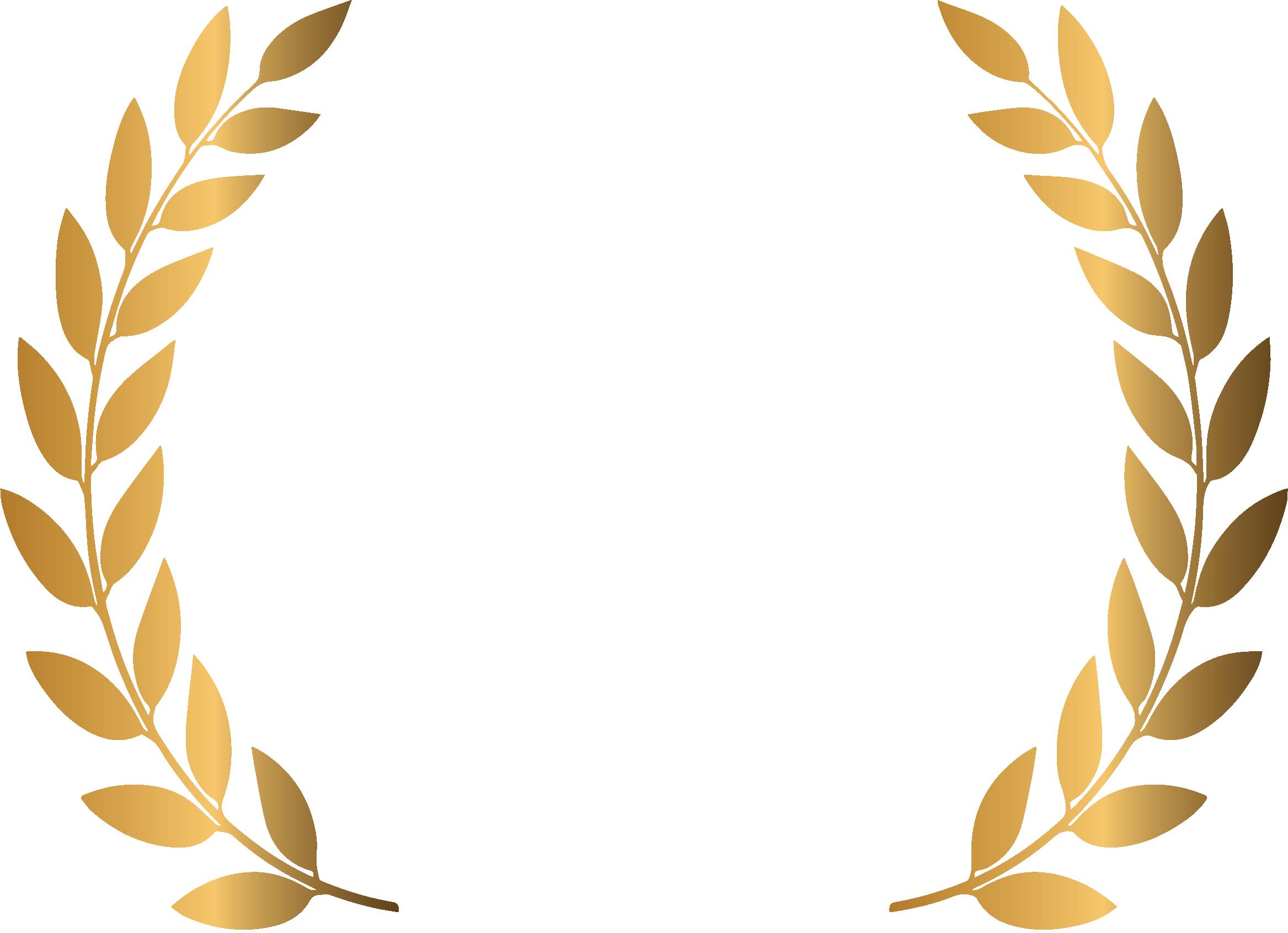 Executive Resume Award of Excellence 2