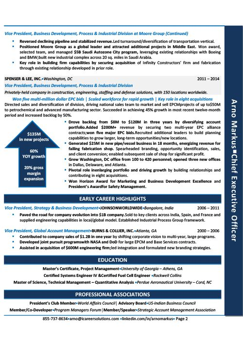 Chief Executive Officer Resume Sample 2