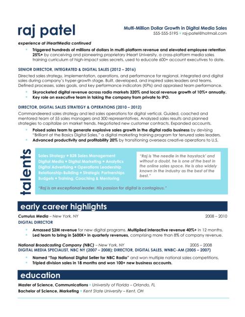 VP of Sales Resume Sample 2