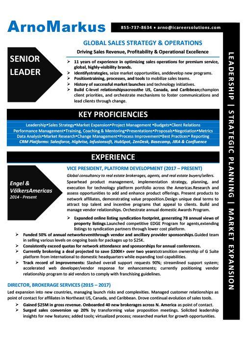 Vice President of Sales Resume Sample 1
